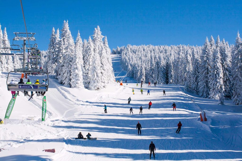 3 Reasons You Should Go Snow Skiing
